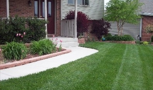 lawn-care-treatment-schedule_jpg_opt395x399o0,0s395x399